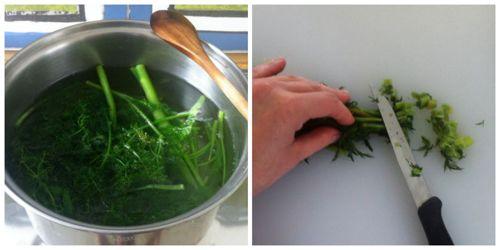 cucinare-finocchietti