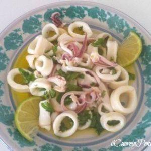 insalata di calamari