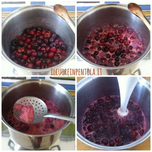confettura-di-ciliegie-preparazione2