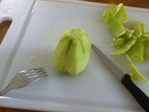 zucchina-centenaria-pelata