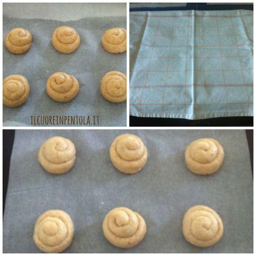 preparare-biscotti-san-martino-ricotta