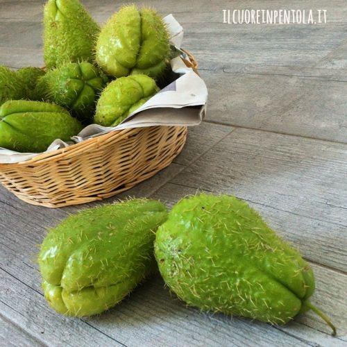 zucchina-pelosa