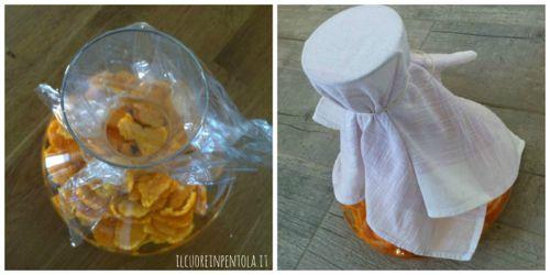 liquore-al-mandarino-ricetta2