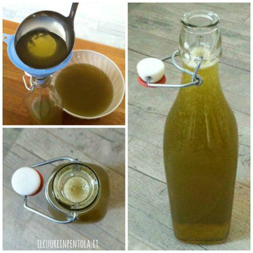 liquore-di-carciofo-ricetta4