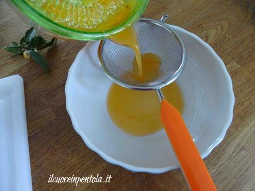 filtrare succo di mandarini