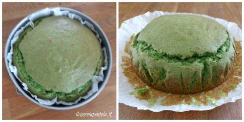 cuocere pan di spagna verde