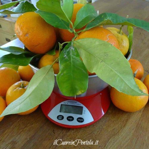 arance amare di Siviglia