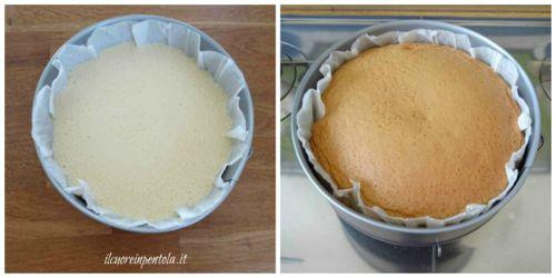 cuocere pan di spagna