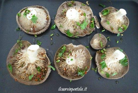 disporre funghi nella teglia