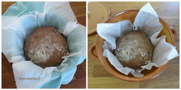 cottura pane al cioccolato
