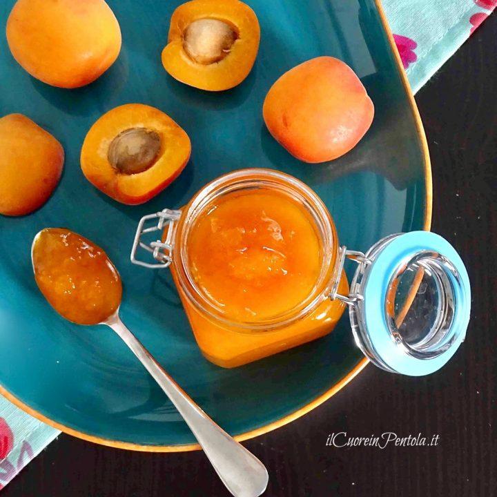 marmellata di albicocche bimby )