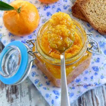 marmellata mandarini bimby